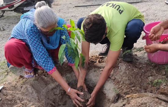 The elders took the responsibility the planted saplings