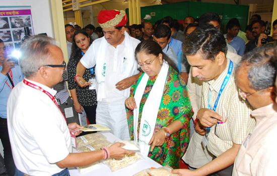 CM's Special interest in prepared mushroom varieties