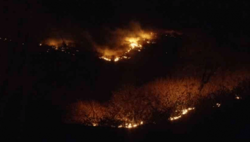Fire in forest area behind Sajjangarh