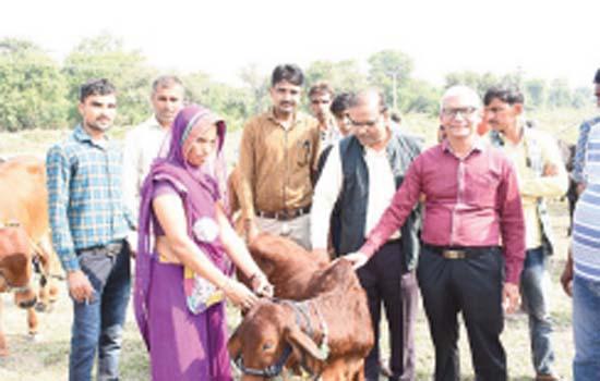 Zinc organizes Advanced Breed vats Exhibition